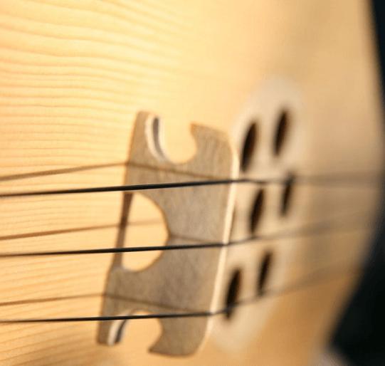 ონლაინ რეჟიმში შეგასწავლით ფანდურზე დაკვრას და სიმღერას